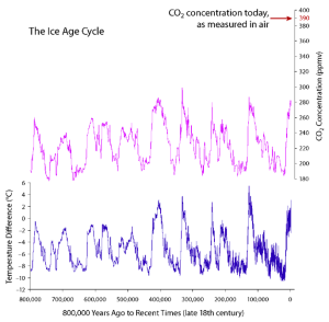 Carbon Dioxide and Air Temperature: Who Leads and Who Follows?