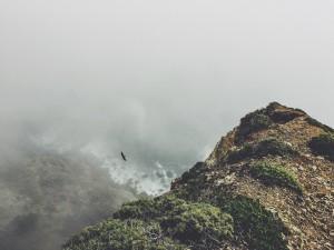Jesus and Environmental Sin