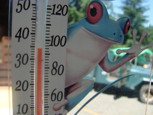 A Mere Couple of Degrees, a Mere Single Thermometer–and a Matter of Integrity