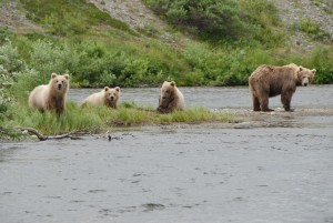 Stewardship Advice For President Obama's Alaska Trip