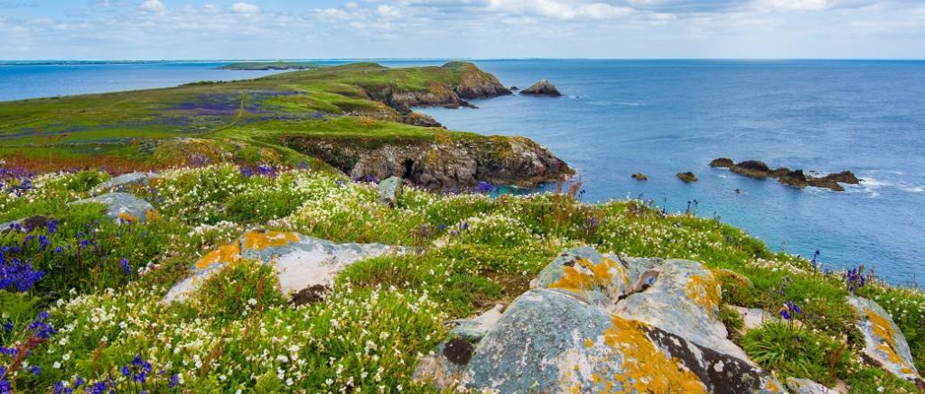 unsplash Ireland cropped