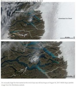 Did Global Warming Cause Peat Wildfires in Greenland?
